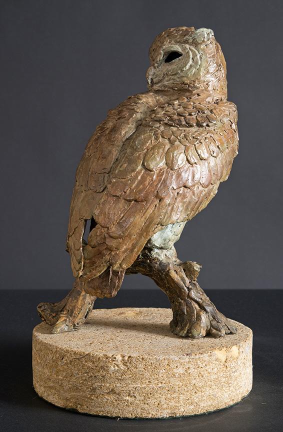 Eagle Owl b