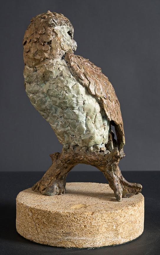 Eagle Owl c