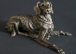 Flat coat bronze dog