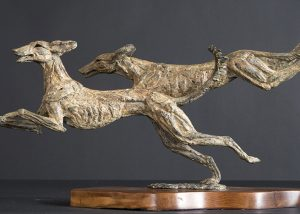 Flying Saluki a