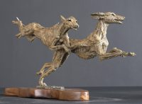Flying Saluki c