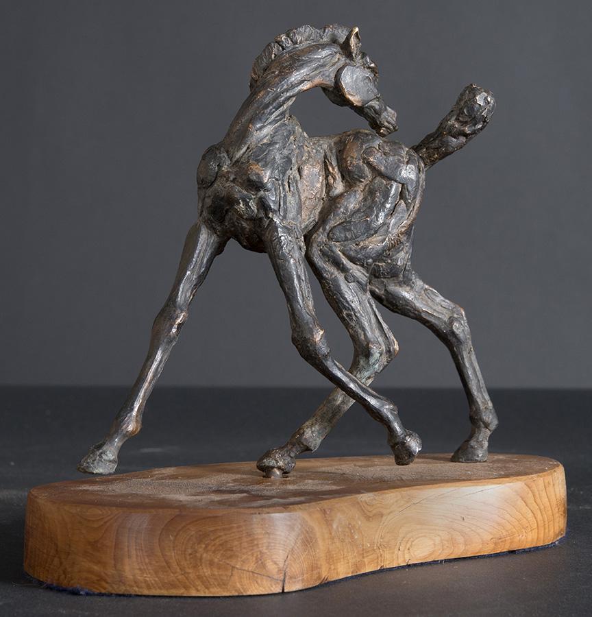 Foal bronze statue