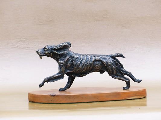 dogs running spaniel 2